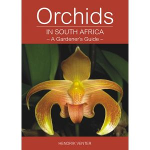 Orchids in South Africa: A Gardener's Guide